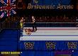 WWF European Rampage