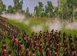 Empire: Total War - На тропе войны