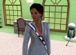 Sims 3: Ambitions, The