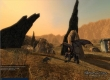 Repopulation, The