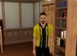 Sims 3: Fast Lane Stuff, The