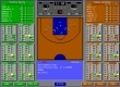 Nothing But Net!: Pro League Basketball