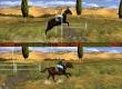 Jump & Ride: Riding Academy
