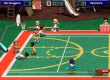 Backyard NBA Basketball