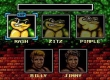 Battle Toads and Double Dragon
