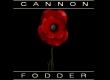 Cannon Fodder 1