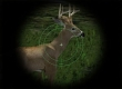 Cabela's Ultimate Deer Hunt